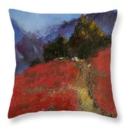 Once Upon A Time IIi Throw Pillow
