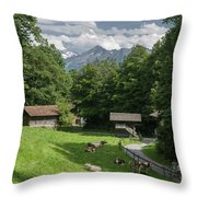 one afternoon in Ballenberg Throw Pillow