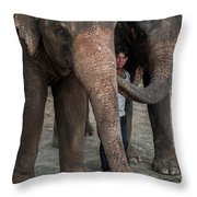 One Man, Two Elephants Throw Pillow