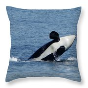 One Orca Leaping Throw Pillow