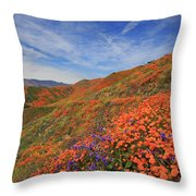 Oodles Of Poppies Fill The Walker Canyon Of Lake Elsinore, Calif Throw Pillow