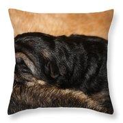 Our Singleton Throw Pillow