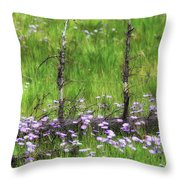 Overcome With Beauty Throw Pillow by Rick Furmanek