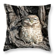 Owl In A Tree Throw Pillow