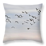 Pacific Ocean Sky With Sea Gull Throw Pillow
