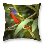 Painted Bunting Male Throw Pillow