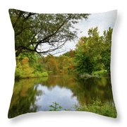 Painted Fall On The Back Pond Throw Pillow