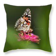 Painted Lady Butterfly At Rest Throw Pillow