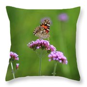 Painted Lady Butterfly Beauty Throw Pillow