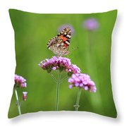 Painted Lady Butterfly In Green Field Throw Pillow