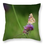 Painted Lady Butterfly In Shadows Throw Pillow