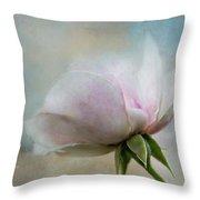 Pale Summer Rose Throw Pillow