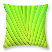 Palms And Fronds - Hawaii Throw Pillow