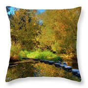 Palouse River Reflections Throw Pillow