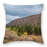 Panorama Of Cliff Dwelling And Fall Cottonwoods In Frijoles Canyon - Bandelier National Monument  Throw Pillow