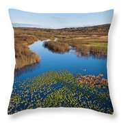 Panorama Of Mouth Of Betsie River Throw Pillow