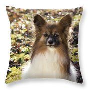 Papillon Sitting In Leaves Throw Pillow