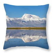 Parallel Realms Throw Pillow