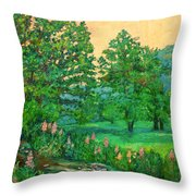Park Road In Radford Throw Pillow