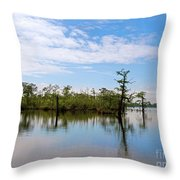 Pasquotank River North Carolina Throw Pillow