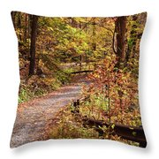Passage Of Gold Throw Pillow