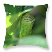 Patience Of Hope Throw Pillow