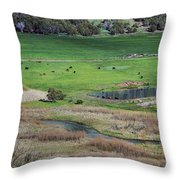 Peaceful Farm In Durango Throw Pillow