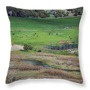 Peaceful Farm Throw Pillow