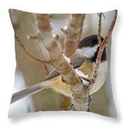 Peaceful Winter Chickadee  Throw Pillow