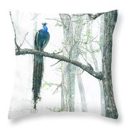 Peacock In Winter Mist Throw Pillow