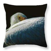 Peeking Throw Pillow by Howard Bagley