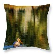 Pelican In Sunlight Throw Pillow by John De Bord