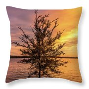 Percy Priest Lake Sunset Young Tree Throw Pillow