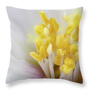 Philadelphus Flower Extreme Close Up With Pollen Throw Pillow