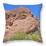 Phoenix Arizona Papago Park  Blue Sky Red Rocks Scrub Vegetation Yellow Flowers 3182019 5340 Throw Pillow