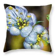 Photinia Spring Throw Pillow