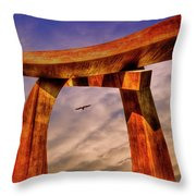 Pi In The Sky Throw Pillow