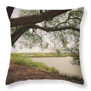 Pierce Marsh Throw Pillow