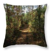 Pijnven Path Throw Pillow