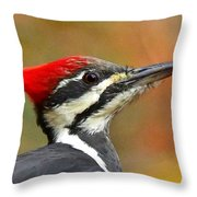 Pileated Woodpecker, 9118 Throw Pillow