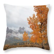 Pillar Of Fire Throw Pillow