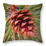 Pine Cone Throw Pillow by Patti Deters