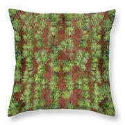 Pine Rows Aerial Throw Pillow