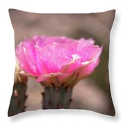 Pink Cactus Bloom Throw Pillow