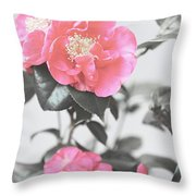 Pink Camellia. Shabby Chic Collection Throw Pillow