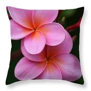 Pink Plumerias  Throw Pillow