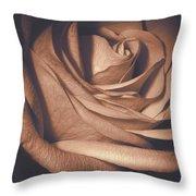 Pink Rose Petals 0219 Throw Pillow