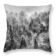 Pinsapos Into The Woods. Bw. Foggy Sunrise Throw Pillow