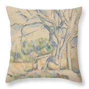 Pistachio Tree At Chateau Noir Throw Pillow