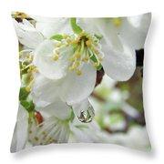 Plum Blossoms 2 Throw Pillow